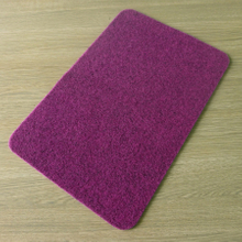 Polyester Non Slip Door Mats DL-WE06